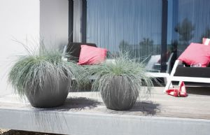 Beautiful low contemporary planters with wheels online at potstore.co.uk